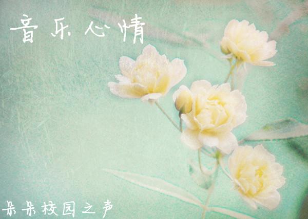 【音乐心情】 - 【朵朵音】音乐心情 第八十一