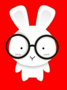 这只很萌的小家伙就是jin兔啦. 哄哄哄哄   戴眼镜了