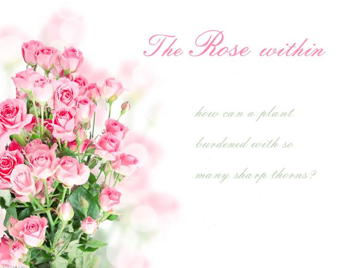 一株玫瑰花矢量图